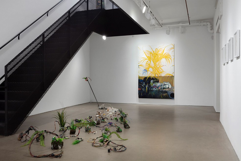 Roman Cochet: A dog named Robòt - Installation View