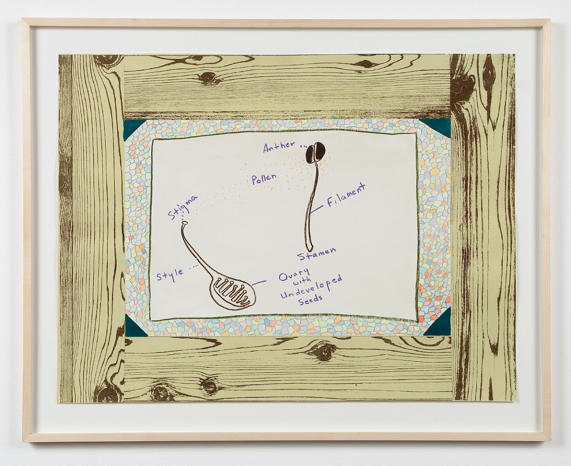 Ree Morton ,   Untitled (Woodgrain, Flower Parts)  ,  ca. 1974     crayon and colored pencil on printed paper     19 x 25 in./48.3 x 63.5 cm     REM-74-DR-062