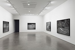 Past Exhibitions: Willie Doherty: The Amnesiac and other recent video and photographic works Oct 25 - Dec  6, 2014