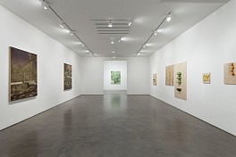 Past Exhibitions: New Paintings Jun  3 - Jul 25, 2014