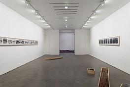 Past Exhibitions: Robert Kinmont / Doris Salcedo Jun 26 - Jul 26, 2013