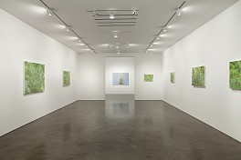 Past Exhibitions: Sylvia Plimack Mangold: Recent Works Mar 16 - Apr 28, 2012