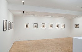 Past Exhibitions: Matthew Benedict: Dramatis Personae Dec  7, 2010 - Jan 22, 2011