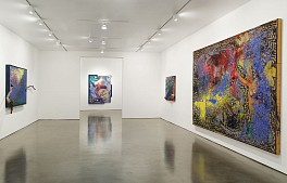 Past Exhibitions: Michael Buthe: Selected Paintings 1988 – 1994 Oct 20 - Nov 24, 2007