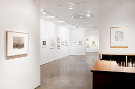 Past Exhibitions: Natural Sympathies: Sylvia Plimack Mangold and Lovis Corinth Works on Paper Dec  9, 2009 - Jan 16, 2010