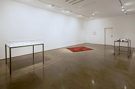Past Exhibitions: Mona  Hatoum Feb 21 - Feb 21, 2009