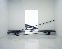 Past Exhibitions: Doris Salcedo: Tenebrae Oct 24 - Nov 25, 2000