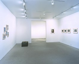 Past Exhibitions: Mona Hatoum Oct 19 - Nov 27, 2002