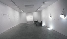 Past Exhibitions: Neil Jenney: Sculpture 1967-68 Jan 19 - Mar  2, 2002