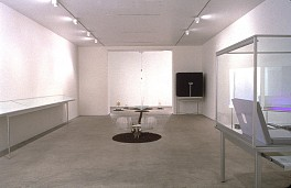 Past Exhibitions: Paul Etienne Lincoln: IGNISFATUUS  Mar 11 - Apr 15, 2000