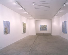 Past Exhibitions: Sylvia Plimack Mangold Jan 29 - Mar  4, 2000
